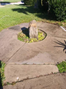 Adams Pressure Cleaning Orange Park FL 904-999-7544